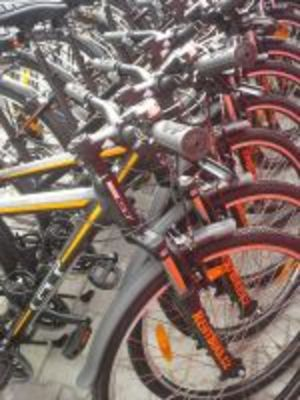 RentBike.cz South Moravia Bike Rental