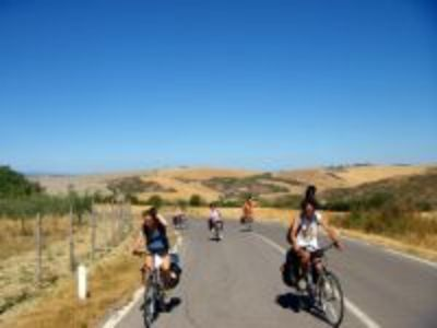 Punto Bici Lucca