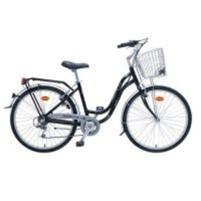 COAST Bike Rentals